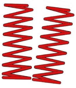 Federn gekürzt 6-8cm Bild 1
